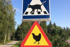 Szwecja motocyklem - znaki 4